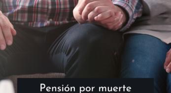 pensionmuertesupervivenciagestofacil.alt
