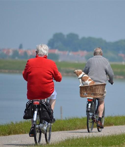 pension-jubilacion